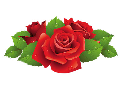 Розы почтой