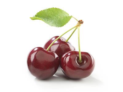 Саженцы вишни и черешни почтой